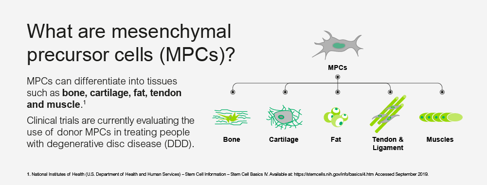 What are mesenchymal precursor cells (MPCs) ?